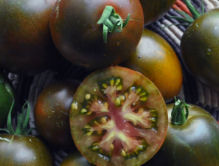 Heirloom Tomatoes, Cherokee Purple, Photo Gerry ManyBears