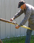 Debarking a lodgepole with draw knife