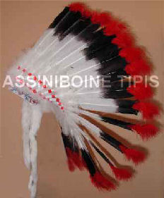 Sioux Feather Headdress